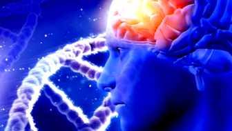 epilepsia en asperger